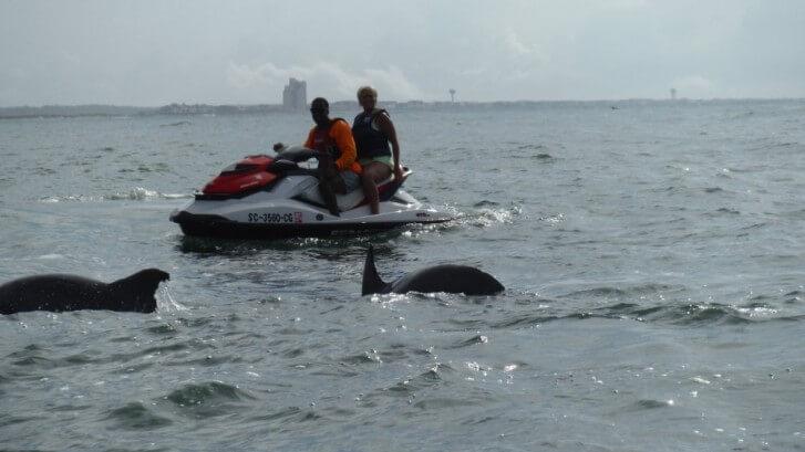 dolphin cruise Myrtle Beach